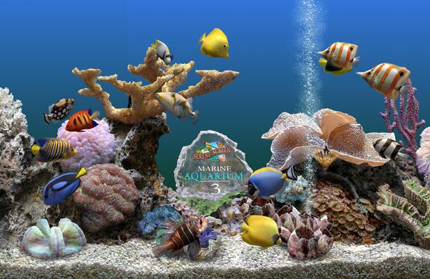 30 Light Effect Wallpapers To Liven Up Your Desktop: New Marine Aquarium Deluxe Screensaver V3 Download Ver